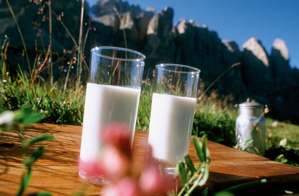 Farm holiday with breakfast at the Siusi allo Sciliar